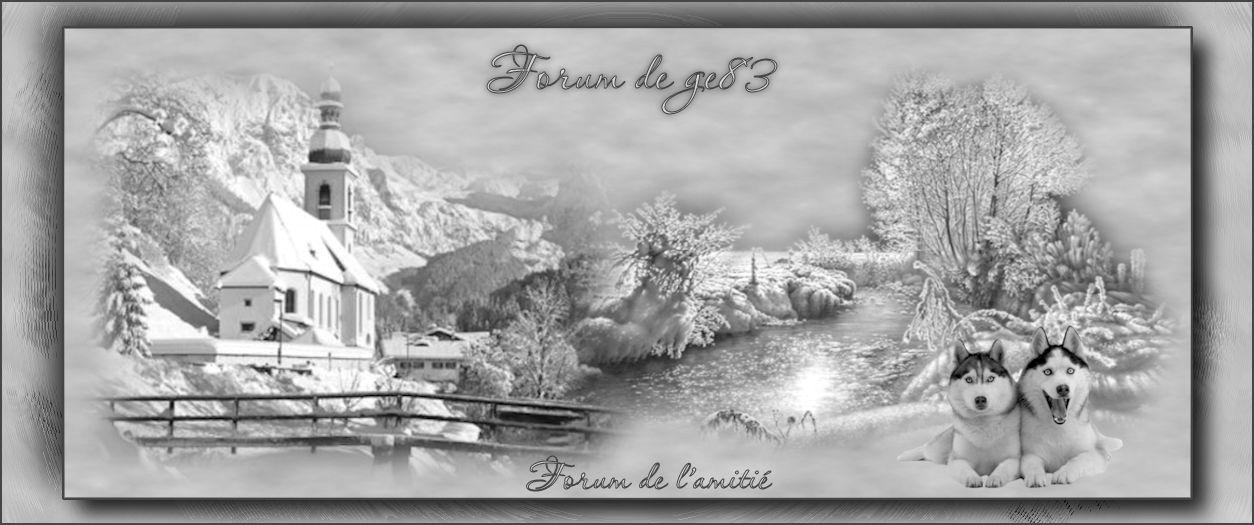 Forum de ge83